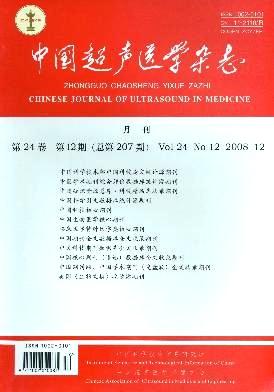 中国超声医学杂志杂志