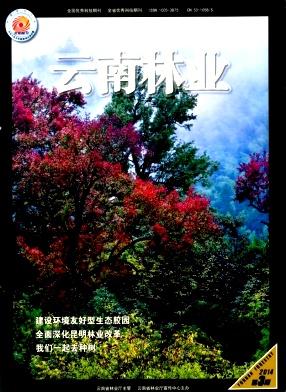 云南林业杂志
